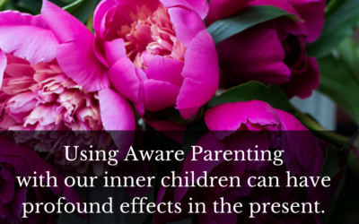 Using Aware Parenting with our inner children can have profound effects in the present