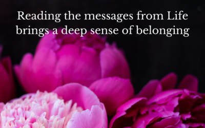 Reading the messages from Life brings a deep sense of belonging